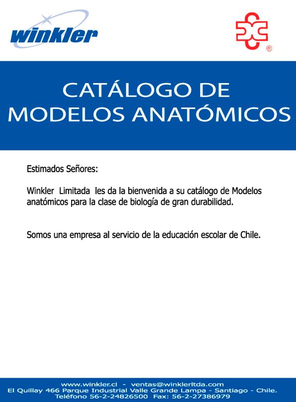 Catálogo Winkler Modelos Anatómicos